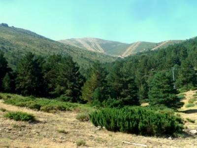 Circo Cerradillas-Loma Noruego; cañon del guadalix bosque animado de oma cañon del cares